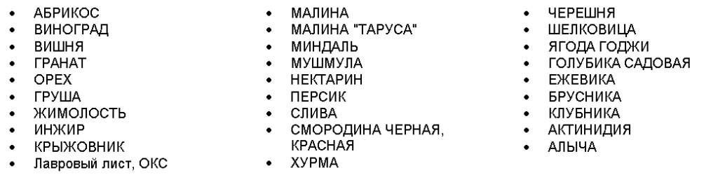 карт2.PNG